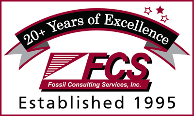 FCS Logo and 20+ Years of Excellence Banner - FCS was established in 1995