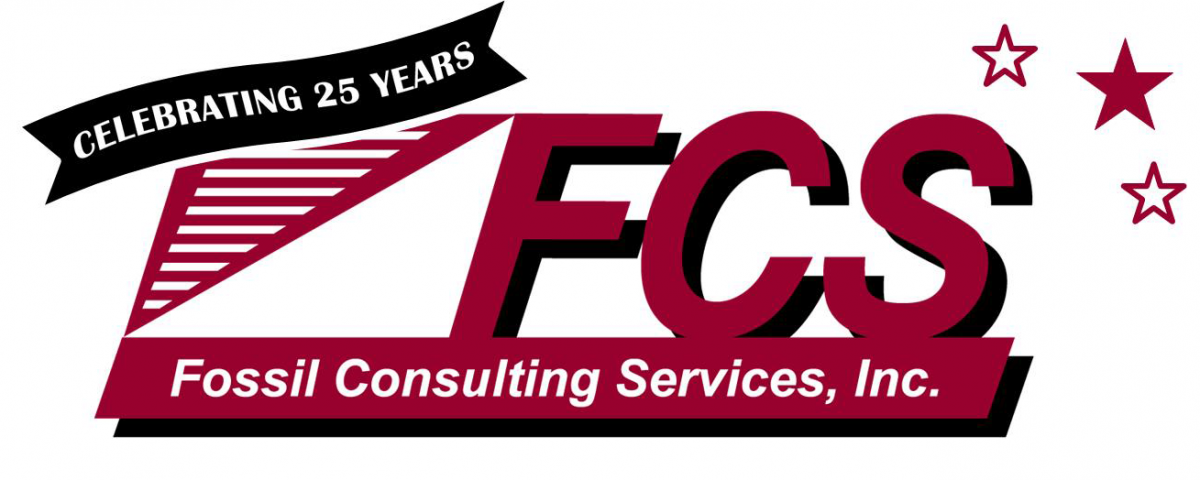25th Anniversary Logo with extra white space